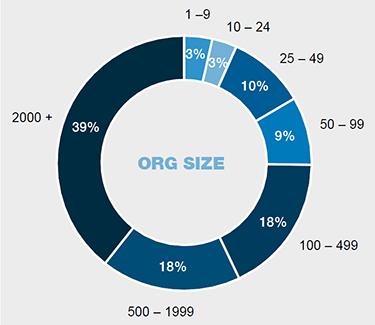 Organisation size