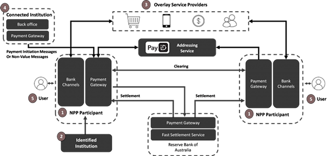 New Payments Platform entities