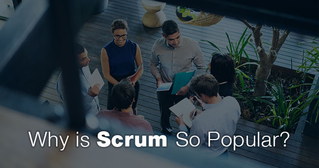 Why is Scrum So Popular?