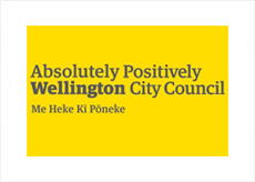 Wellington City Council Case Study - Thought Leadership and Experience