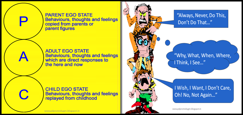 Letters PAC vertically aligned on the left. P = Parent Ego State: Behaviours, thoughts and feelings copied from parents or parent figures. A = Adult Ego State: Behaviours, thoughts and feeling which are direct responses to the here and now. C = Child Ego State. Behaviours, thoughts and feelings replayed from childhood.