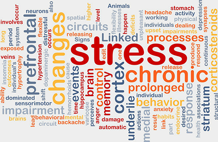 """Word cloud outlining terms linked with mental health and processes, such as """"stress, changes, chronic, dealing, circuits, hypertrophy and behaviour""""."""